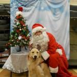Brreze at Christmas 2014